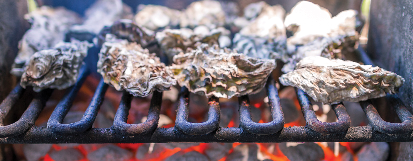 Grilled oysters are ready to eat when the shell pops open.