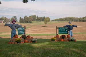 The entrance to the Harvest Moon Festival. (Photo provided by the Delaware Nature Society)