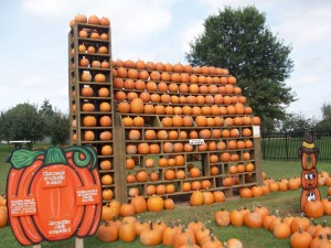 Millburn Orchards - Pumpkin House