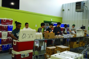 Volunteers pack meals for the Food Bank of Delaware's Summer Nutrition Program for kids. Last year volunteers assisted in packing more than 192,000 meals for children at risk of going hungry over the summer months. (Photo Kevin Crean)