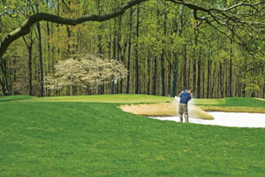 Golfer in a bunker at Deerfield, which is surrounded by the beauty of White Clay Creek Park. (Photo provided by Deerfield)