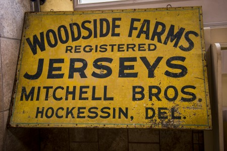 Woodside has a herd of 32 Jersey cows.