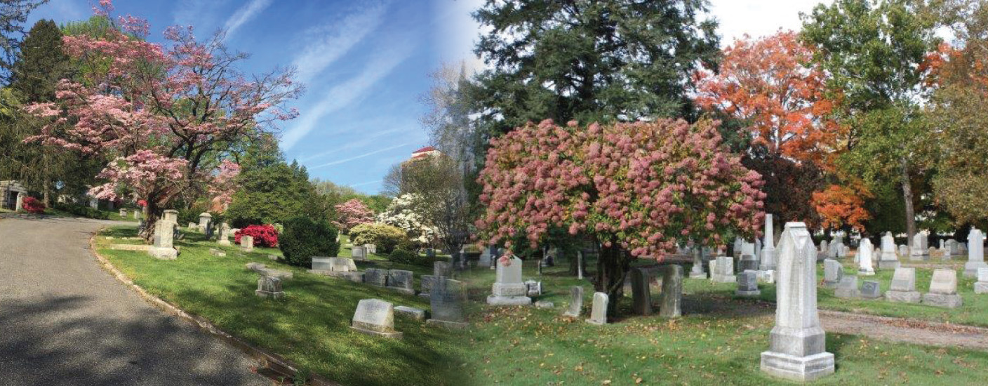 The cemetery, off Delaware Avenue, is the resting place for several historic figures. Photo courtesy of the Wilmington & Brandywine Cemetery